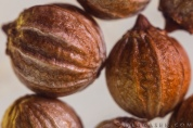Ziarna kolendry / Coriander seeds